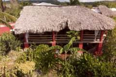 House sit in Arroyo El Cabo, Dominican Republic