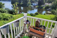 House sit in Millbury, MA, US