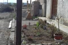 House sit in Torremendo, Spain