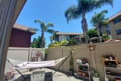 House sit in San Diego, CA, US
