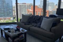 House sit in Chicago Loop, IL, US