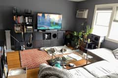 House sit in Watertown, MA, US