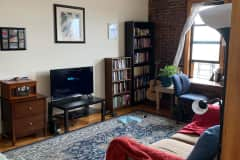 House sit in Crown Heights, NY, US