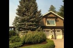 House sit in Kelowna, BC, Canada