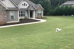 House sit in Palmetto, GA, US