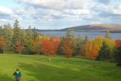 House sit in Inverness, NS, Canada