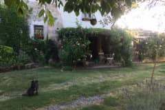 House sit in Orvieto, Italy