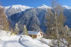 House sit in Blitzingen, Switzerland