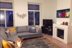 House sit in The Hague, Netherlands