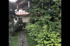 House sit in Khon Kaen, Thailand