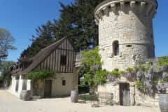 House sit in Chinon, France