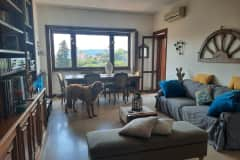 House sit in Rome, Italy