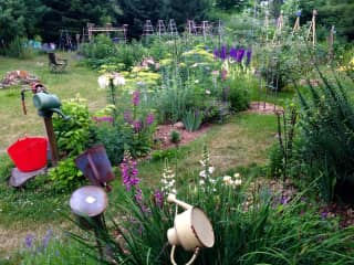 Flower beds in early summer