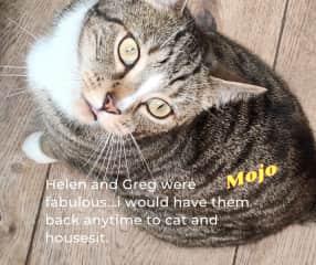 Lovely Mojo
