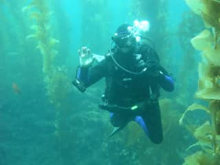 Happily diving Catalina