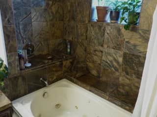 The master bathroom has a bath and a waterfall shower.