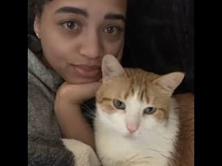 My beloved cat Marley who loved cuddling and selfies.