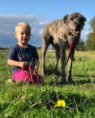 Loulynn walking and sitting with Tavi While housesitting in rural England