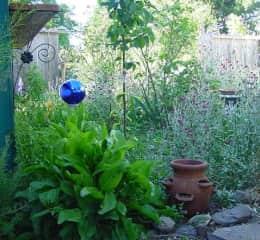 Emmy Lou Gardens, Santa Rosa, CA. near the garden house