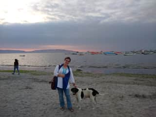 How lovely to travel and make new furry friends! Paracas, Peru