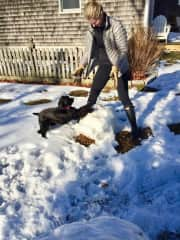 Paula playing in the snow with Cozette, the dog we sit for in Boston.