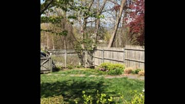 Part of the backyard