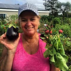 We love to cook with vegetables from local markets from and our garden.  Here Cathy has harvested an eggplant from her community garden plot.  Larry will use it to make Babaganoush.