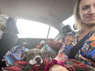 Cozy car rides