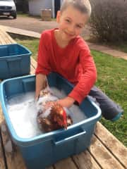 Our 10 years old, bathing a chicken before his 4H show.