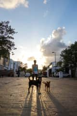 Greg with Princess and Lily, while house-sitting in Cancun, Mexico