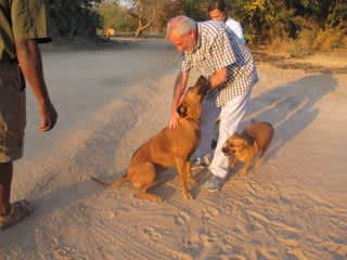 This is me, my wife Janet in the background, and a couple of dogs that we met in Zimbabwe.