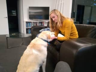 Spending time with Pink, one of the dogs we house sat for in New Zealand for 3 months.