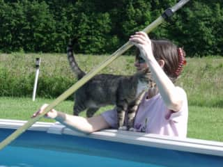 Kitty pool supervisor