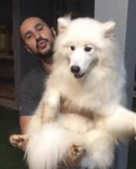 Then we see Lucas at a barbecue with his friend John on his lap.  Dog of our friend Rodolfo ... John is an amazing dog