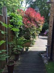 Usual terraced house access to garden.