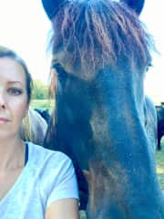Connie and Harry, our beautiful Percheron gelding.
