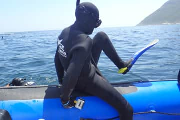 Snorkeling/Scuba Diving