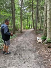 In 2021, fun pet sitting in St-Lazare, Quebec, Canada. Gizmo and Skip enjoying a long walk!