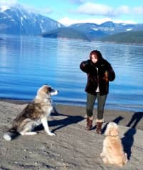 We love walking with our beautiful dogs, Miller (a Siberian Husky)- He was a rescue dog and lived a wonderful 10 years with us. & Bobby (a Cocker Spaniel) who we had since a puppy. He was with us till the age of 15. We miss them both so much.