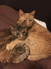 Cuddling is always good