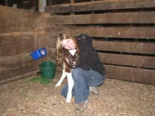 Baby Calf on the farm I grew up on.