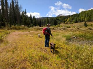 Lee hiking with Godiva and Acadia while we are house/dog sitting