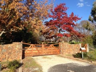 Gates in autumn