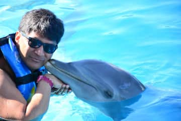 Irwin swimming with the dolphins.