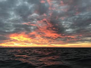 I love to watch the sunsets while at sea.