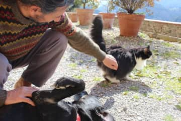 Carmelo giving Zorro and Sammy some lovin' in Tuscany