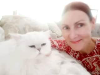Seraphina _chinchilla 11 year old cat _Pet/house sit Camphill QLD Mar 2021