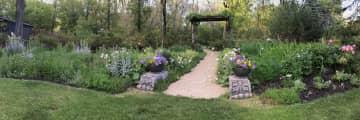 Louise's flower garden