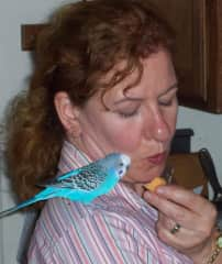 yes, that's me - different hair, different budgie