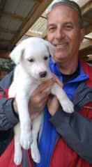 Bob with dog sled pup in Alaska